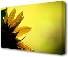 Sunflowers Macro Flowers Canvas Print Wall Art