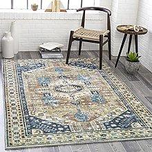 Taani Printed Oriental Area Rug