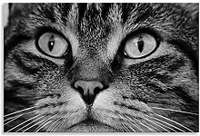 Tabby Cat Face Canvas Black White Landscape Wall