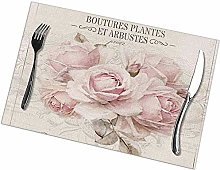 Table Placemats Set of 6 French Shabby Chic
