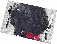 Table Placemats Set of 6 Stanley The Little Black