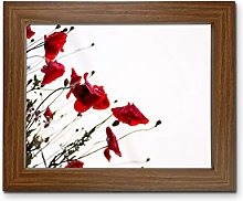 Tailored Frames Picture Frame with Plastic Glass