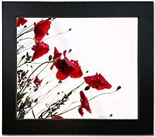 Tailored Frames Square Design Picture and Photo