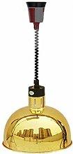 TAOSE Food Heat Lamp Commercial 250W 60-180cm