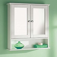 Taylor & Brown® Maine White Double Mirrored Door