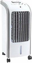 Taylor & Brown® Pedestal Cooling Fan Desk Fans