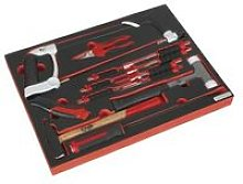 TBTP06EU Tool Tray with Hacksaw, Hammers & Punches