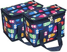 TEAMOOK 2PCS Insulated Lunch Bag Cool Bag for