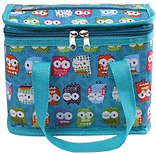 TEAMOOK Insulated Lunch Bag Tote Box Cool Bag
