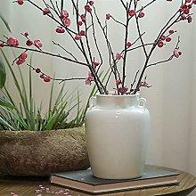 TEAYASON Tabletop Vase Binaural Ceramic Vase,