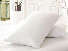 TEXTILE ARENA Pair Goose Feather & Down Pillow
