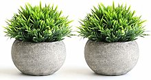 THE BLOOM TIMES 2 PCS Small Fake Plants for Home