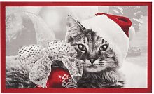 The Christmas Cat Doormat Hanse Home