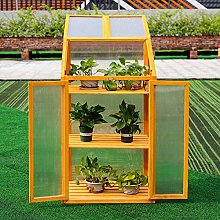 The Fellie Wooden Cold Frame Outdoor Polycarbonate