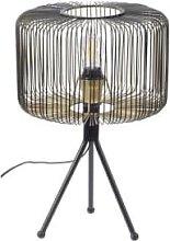The Libra Company - Black and Gold Cage Tripod