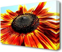 The Sunflower Flowers Canvas Print Wall Art East