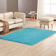 Thickened Anti-Slip And Moisture-Proof Carpets For