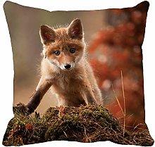 Throw Pillow Cover Brown Face Fox Green Animal