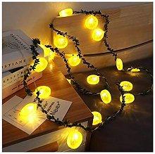 Thsinde - 10 Ones Design 20 LED String Light