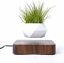 TIANTIAN Levitating Air Bonsai Pot, Rotation