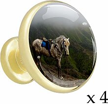 Tiger (1) Alloy Cabinet Knobs Metal Gold 4 Pieces