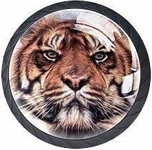 Tiger Big Cat Painting 4 Pieces Crystal Glass