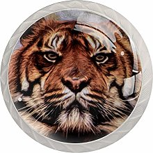 Tiger Big Cat Painting White Crystal Drawer
