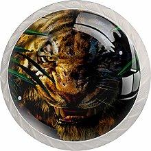 Tiger Cabinet Door Knobs Handles Pulls Cupboard