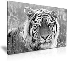 Tiger Canvas Wall Art Picture Print Decoration