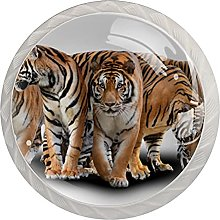 Tiger with Shadow, 4Pack ABS Dresser Knobs Cabinet