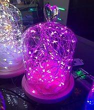 Timewanderer 5m 50 Bright Micro LED Fairy Lights