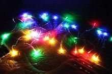 Timewanderer RGB Colorful Led String Fairy Light