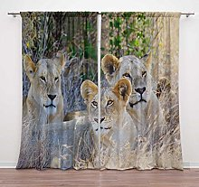Timingila Orange Lion Animal Window Curtain For