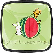 TIZORAX Sleep with a Watermelon Clipart 3D Printed
