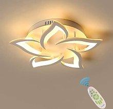 TOOED Ceiling Light LED Ceiling Light Indoor