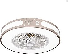 TOOED Modern Ceiling Fan with Lighting, Remote