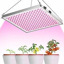 TOPLANET Plant Light, 75W 169 Pink Light Full