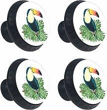 Toucan Design Drawer Knob Pull Handle Round