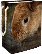 Toy Storage Baskets Rabbit 02 Nursery Hamper Kids