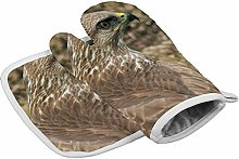 Traasd11an Oven Mitts and Potholder Steppe buzzard