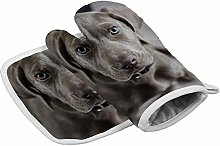 Traasd11an Oven Mitts and Potholder Weimaraner