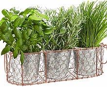 Triple Flower Pot Basket - Indoor Kitchen