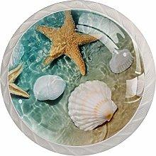 Tropical Beach Seashell Cabinet Door Knobs Handles