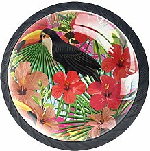 Tropical Bird Toucan Leaves and Hibiscus Flowers