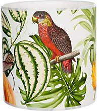 Tropical Bird Wallpaper Cotton Drum Shade Bay Isle