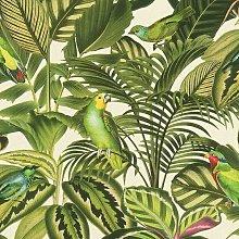 Tropical Exotic Parrot Bird Jungle Palm Leaf