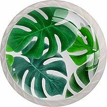 Tropical Green LeavesRound Glass knob White Drawer