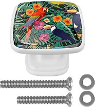 Tropical Parrots Toucans Drawer knobs Drawer Knobs