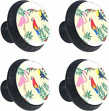 Tropical Toucan Drawer Knob Pull Handle Round