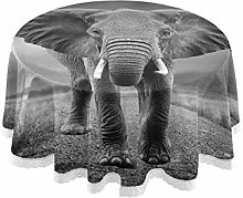 TropicalLife HaJie Tablecloth Africa Elephant